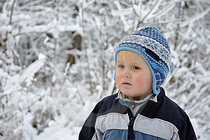 Boy Standing In Snowy Scenery Stock Photo - Image: 17222390