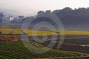 Farm Land Royalty Free Stock Photography - Image: 17223947