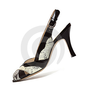 Elegance Female Shoes Royalty Free Stock Photography - Image: 17237297