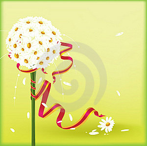 Camomiles A Royalty Free Stock Photos - Image: 17244908