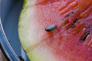 Water-melone Stock Image - Image: 17254771