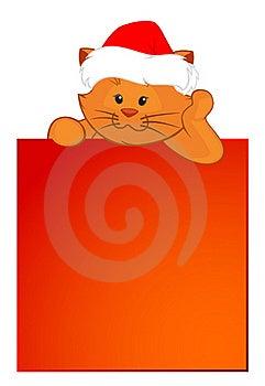 Cartoon Little Kitten Stock Images - Image: 17254944