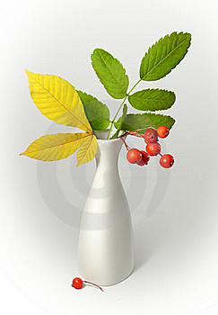 Vase With Leaves Stock Image - Image: 17256651