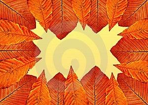 Autumn Frame. Stock Photos - Image: 17293053