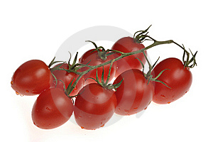 Wet Cherry Tomatos On The Vine Royalty Free Stock Photography - Image: 17297737