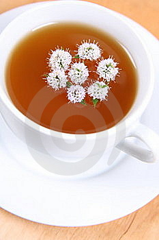 Tea With Flowers Of Peppermint Royalty Free Stock Photos - Image: 17298198