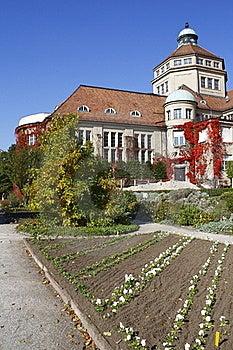 Botanical Garden Royalty Free Stock Photography - Image: 17308557