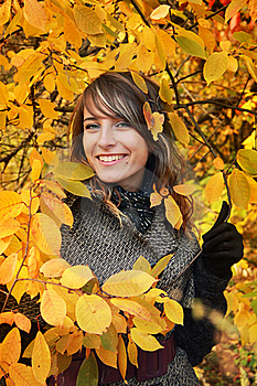 Beautiful Girl Among Yellow Autumn Leaves Stock Photography - Image: 17322982