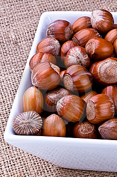 Hazelnuts Royalty Free Stock Photos - Image: 17323808