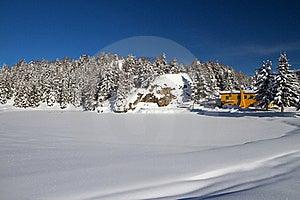 Dew Under Snow Royalty Free Stock Photos - Image: 17365428