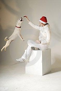 Xmas Girl With Dog Royalty Free Stock Photography - Image: 17377917