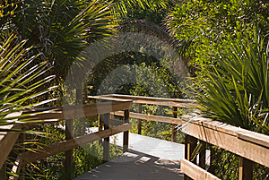 An Island Pathway Stock Photography - Image: 17389562