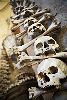 Sculls And Bones On The Wall Royalty Free Stock Photography - Image: 17391897