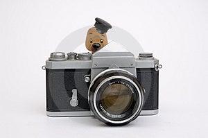 Olhe O Passarinho Fotos de Stock - Imagem: 1746813