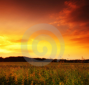 Summer sunset at the countryside Free Stock Image