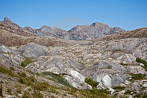 Blast Zone Of Mt. Saint Helens Royalty Free Stock Photo - Image: 17405115