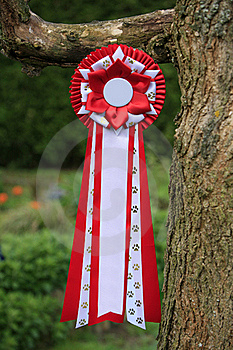 Red Ribbon With Paw Print Royalty Free Stock Images - Image: 17417989