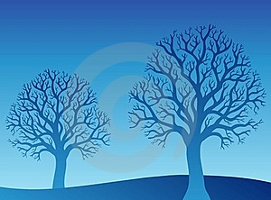 Two Blue Trees Stock Photography - Image: 17426302