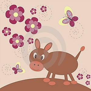 Funny Burro Royalty Free Stock Image - Image: 17430786