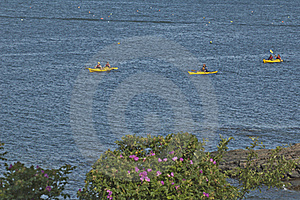 Three Yellow Kayaks Royalty Free Stock Images - Image: 17430959
