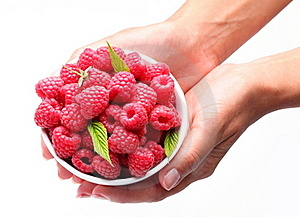 Crockery With Raspberries In Woman Hands. Royalty Free Stock Photo - Image: 17431575