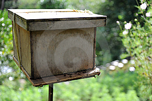 Bee Farm Royalty Free Stock Image - Image: 17433536