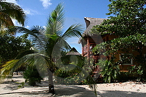 Palapas Playa Del Carmen - Au Mexique Images libres de droits - Image: 17448149