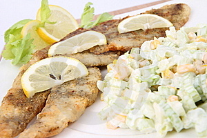 Fried Fish With Side Salad Stock Photography - Image: 17455812