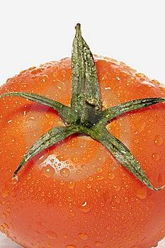 Red Tomatoe Stock Photo - Image: 17456430