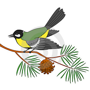 Titmouse On A Pine Branch Stock Images - Image: 17466734