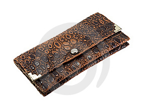 Brown Purse Royalty Free Stock Photo - Image: 17471195