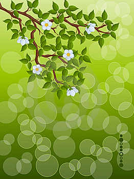 Floral Background Stock Photos - Image: 17481443
