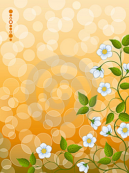 Floral Background Stock Photos - Image: 17493833