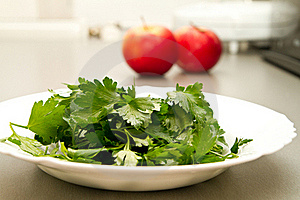 Parsley Royalty Free Stock Photo - Image: 17504385