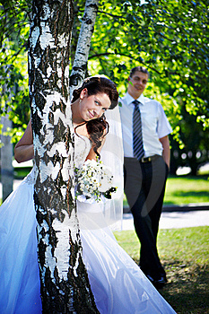 Bride And Groom At The Birches Royalty Free Stock Photography - Image: 17513637