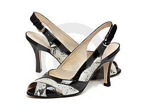 Elegance Female Shoes Stock Photos - Image: 17521423