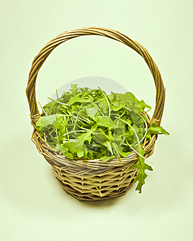 Basket Of Rocket Royalty Free Stock Photography - Image: 17533557