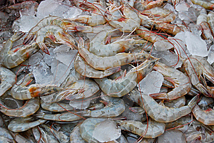 Raw Fresh Shrimp In Market Stock Photos - Image: 17543633