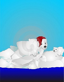 Two Polar Bears On Ice Pack Stock Image - Image: 17545531