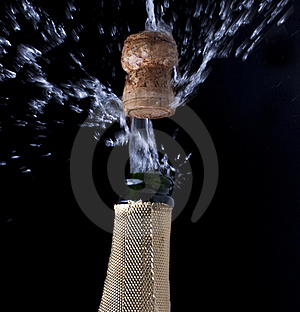 Champagne And Cork Stock Photos - Image: 17545663
