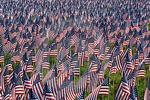 Landscape Flags Royalty Free Stock Photography - Image: 17548897