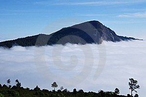 Fog At Doi Hua-sua Royalty Free Stock Photos - Image: 17558488
