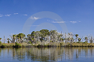 St. Martins Marsh Aquatic Preserve Royalty Free Stock Images - Image: 17561449