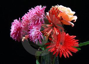 Flower Decoration Stock Photo - Image: 17563500