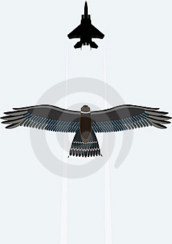 Hawk And A Fighter Royalty Free Stock Photos - Image: 17566078