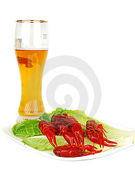 Crawfish And Beer Stock Photos - Image: 17572943