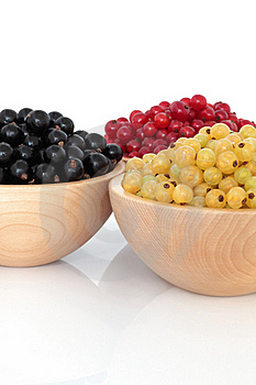 Red, Black And White Currants Stock Images - Image: 17577364