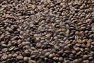 Sprinkle Of Coffee Beans Stock Photo - Image: 17580170
