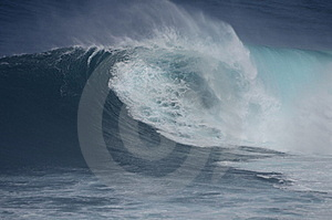 Jaws Royalty Free Stock Photography - Image: 17591537