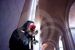 Virgin Mary With Rose Stock Photography - Image: 1767282